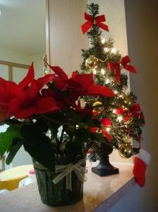 Моята елха и Коледна звезда
